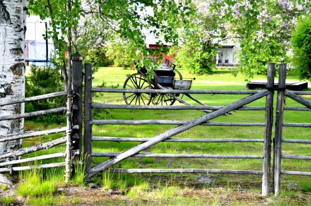 swedish-summer-820302